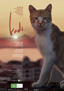 Movie Night - KEDI - @ Neko Ngeru Cat Adoption Cafe | Lower Hutt | Wellington | ニュージーランド